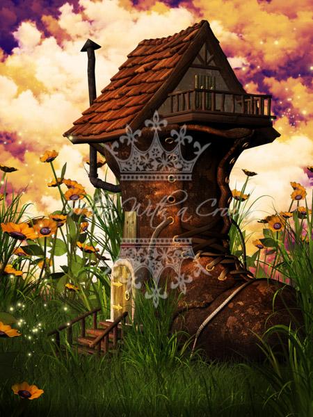 Fantasy Shoe Land