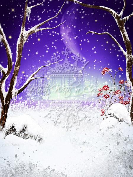 Frozen Winter