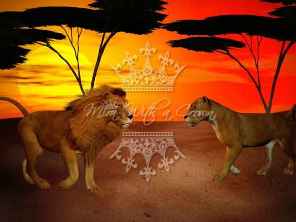 Safari Backgrounds