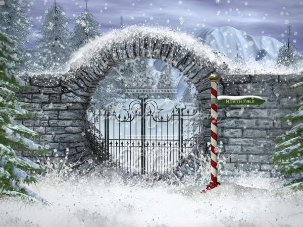 Snowy Enchantment